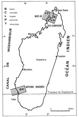 Les régions de production Ylang Ylang