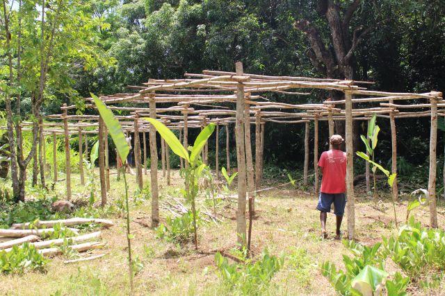 La plantation de vanille au Domaine de Florette
